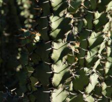 Sharp Shapes and Shadows - Cactus Garden Sticker