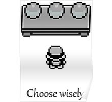 Pokemon - The choice Poster