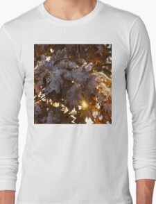 Honey Colored Honeycomb Ice With a Sun Flare Long Sleeve T-Shirt