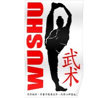 wushu girl stance high balance chinese martial art traditional Poster