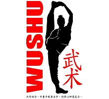 wushu girl stance high balance chinese martial art traditional Photographic Print