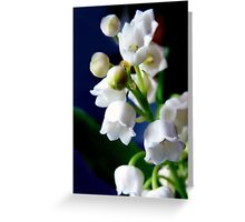 Fête du Muguet - (lily of the valley) Greeting Card