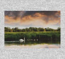 Swan and cygnets on the Isis (River Thames) One Piece - Long Sleeve