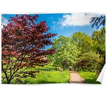 Primary Colours of Spring Poster