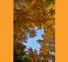 Brilliant Autumn Canopy - a Window to the Sky Vertical Unisex T-Shirt