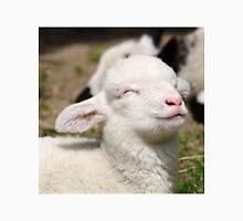 Spring lamb Unisex T-Shirt