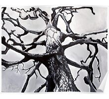 Dying Tree Poster