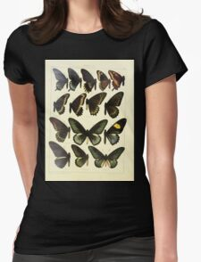 The Macrolepidoptera of the world a systematic account of all the known Butterflies Moths Adalbert Seitz V1 V3 1906 095 Papilio Womens Fitted T-Shirt