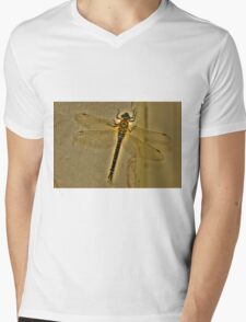 Dragonfly Fable Mens V-Neck T-Shirt