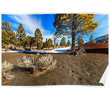 San Francisco Peaks Arizona Poster