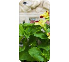 Flowers in the yard iPhone Case/Skin