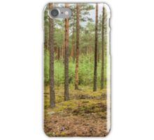 Trees in forest iPhone Case/Skin