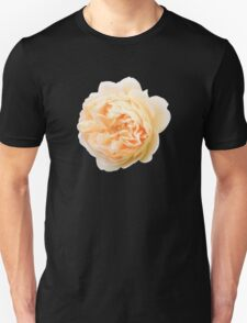 Yellow rose closeup isolated on black background T-Shirt