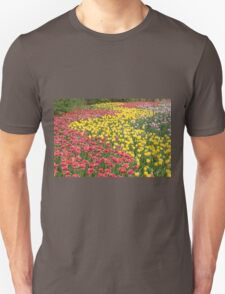 Rows of Tulips in Spring T-Shirt