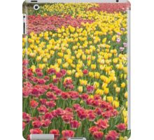 Rows of Tulips in Spring iPad Case/Skin