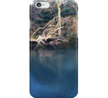 Estuary view. iPhone Case/Skin