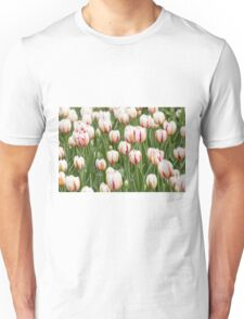 Tulips in spring time Unisex T-Shirt