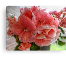 Pink Flowers HDR Canvas Print