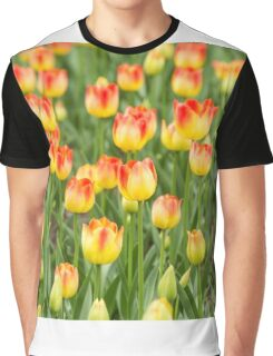 Tulips in the spring time Graphic T-Shirt