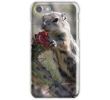 Those Flower Pedals Taste Mighty Good iPhone Case/Skin