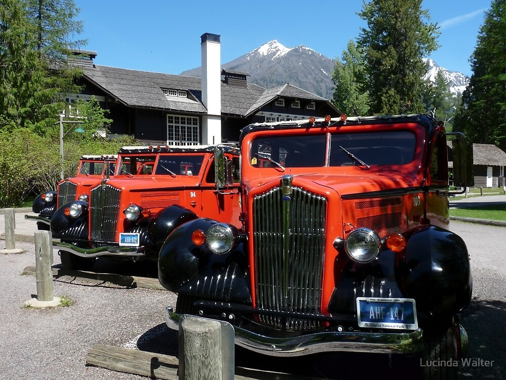 Historic Red Jammers of Glacier National Park by Lucinda Walter