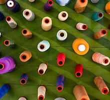 Multicolor sewing threads on wooden background by Atanas NASKO