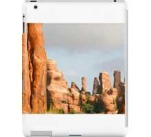 Arches 008 iPad Case/Skin