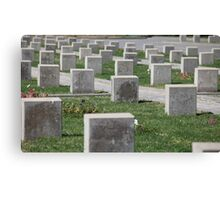 tombstones unknown soldiers at the military cemetery Canvas Print