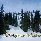 Christmas Wishes by Lucinda Walter