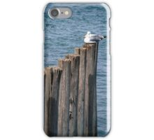 Two Seagulls iPhone Case/Skin