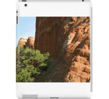 Arches 011 iPad Case/Skin