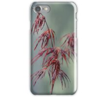 Chinese Maple iPhone Case/Skin