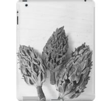 Magnolia Pods iPad Case/Skin