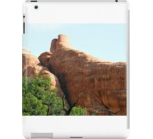 Arches 017 iPad Case/Skin