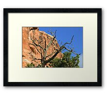 Arches 020 Framed Print