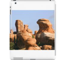 Arches 023 iPad Case/Skin