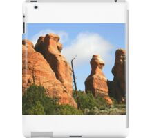 Arches 025 iPad Case/Skin