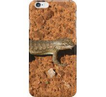Arches 30 iPhone Case/Skin