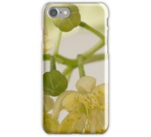 Basswood Tree Blossoms - Macro iPhone Case/Skin