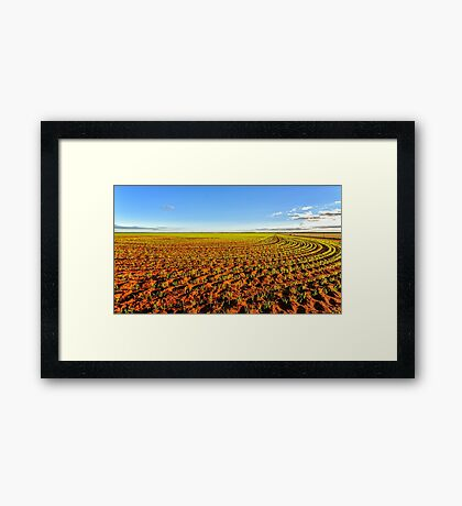 Green Fields Framed Print