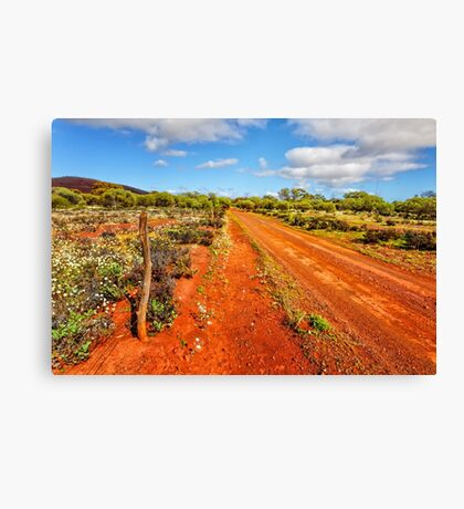 Bush Track Canvas Print