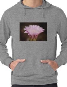 Your Beauty Leaves Me Breathless Lightweight Hoodie