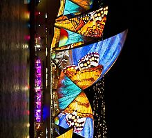 Butterfly Sails - Sydney Vivid Festival - Australia by Bryan Freeman