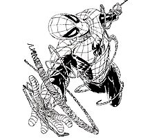 The Amazing Spider-Man art Photographic Print