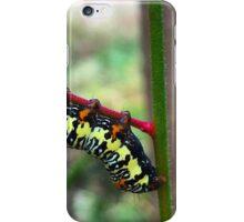 Caterpillar's Lunch - Macro iPhone Case/Skin