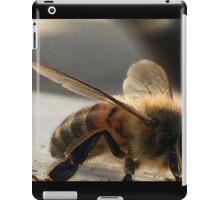 Resting Bee - Macro  iPad Case/Skin