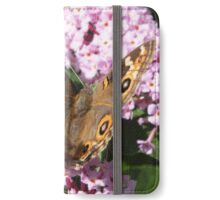 Meadow Argus - Junonina villida iPhone Wallet/Case/Skin
