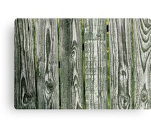 Wooden hedge  Canvas Print