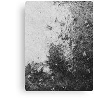 Earth Sweat Design (Noir Color) Canvas Print