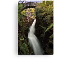 Aira Falls, Lake District, England Canvas Print